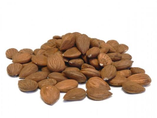apricot kernels 1548282 1280x960